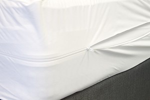 BedBug Zippered Mattress Cover Protector - Twin